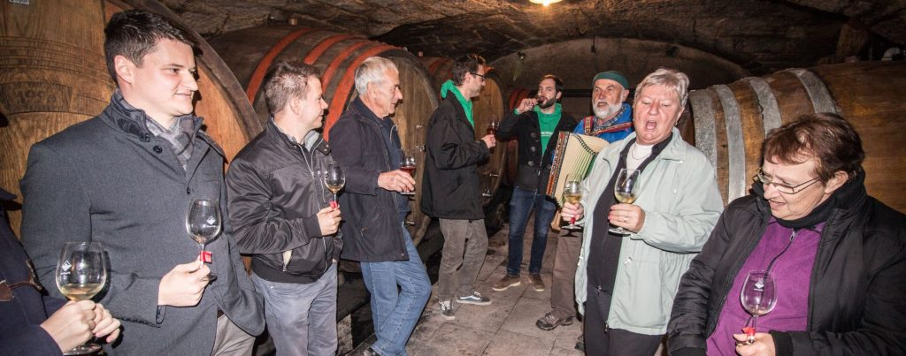 experience wine cellars in Vipava valley