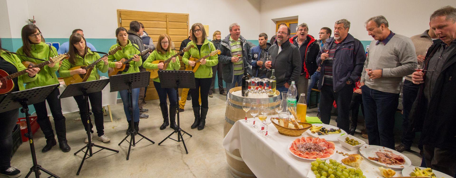 open wine cellars in Vipava valley
