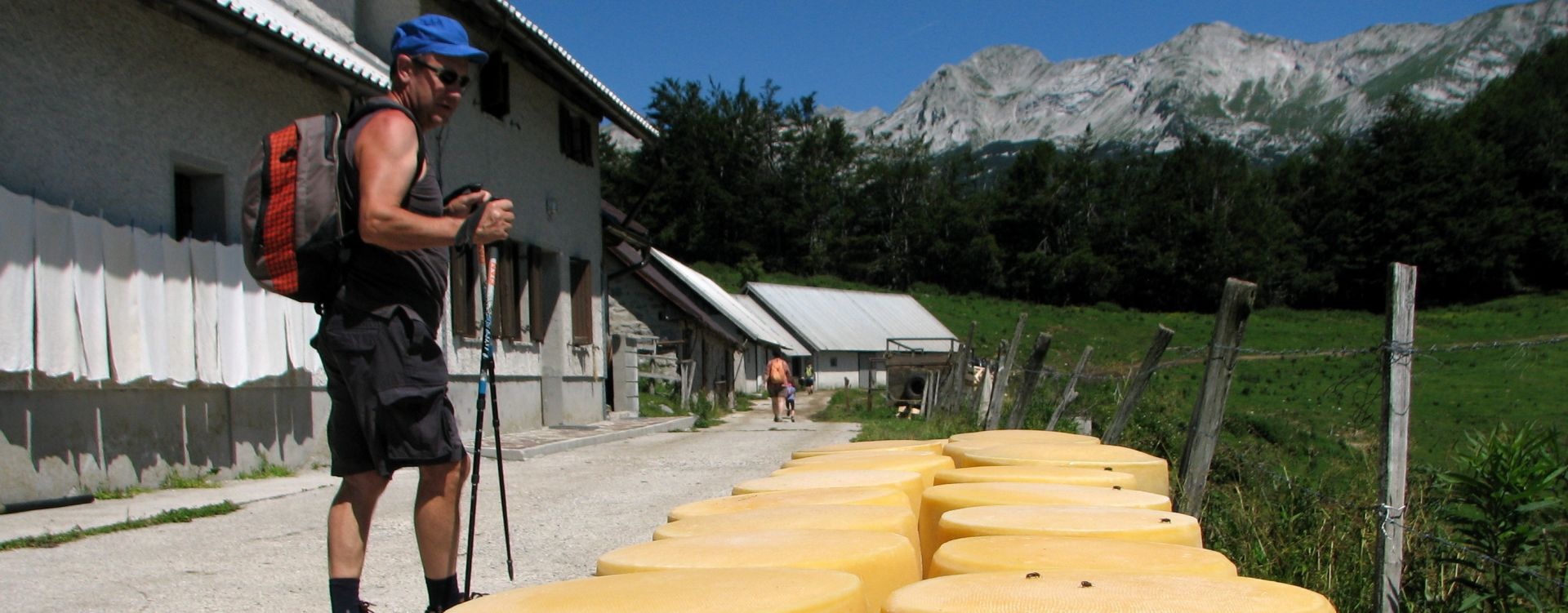 Alpine pasture Soca valley Slovenia