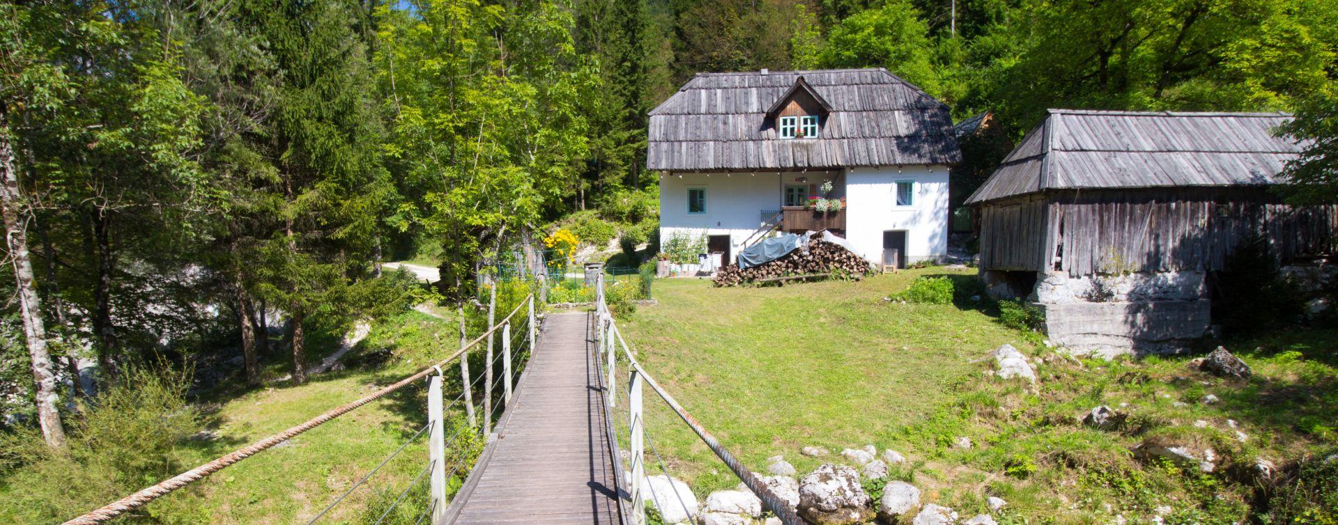 Slovenian Food Soca valley